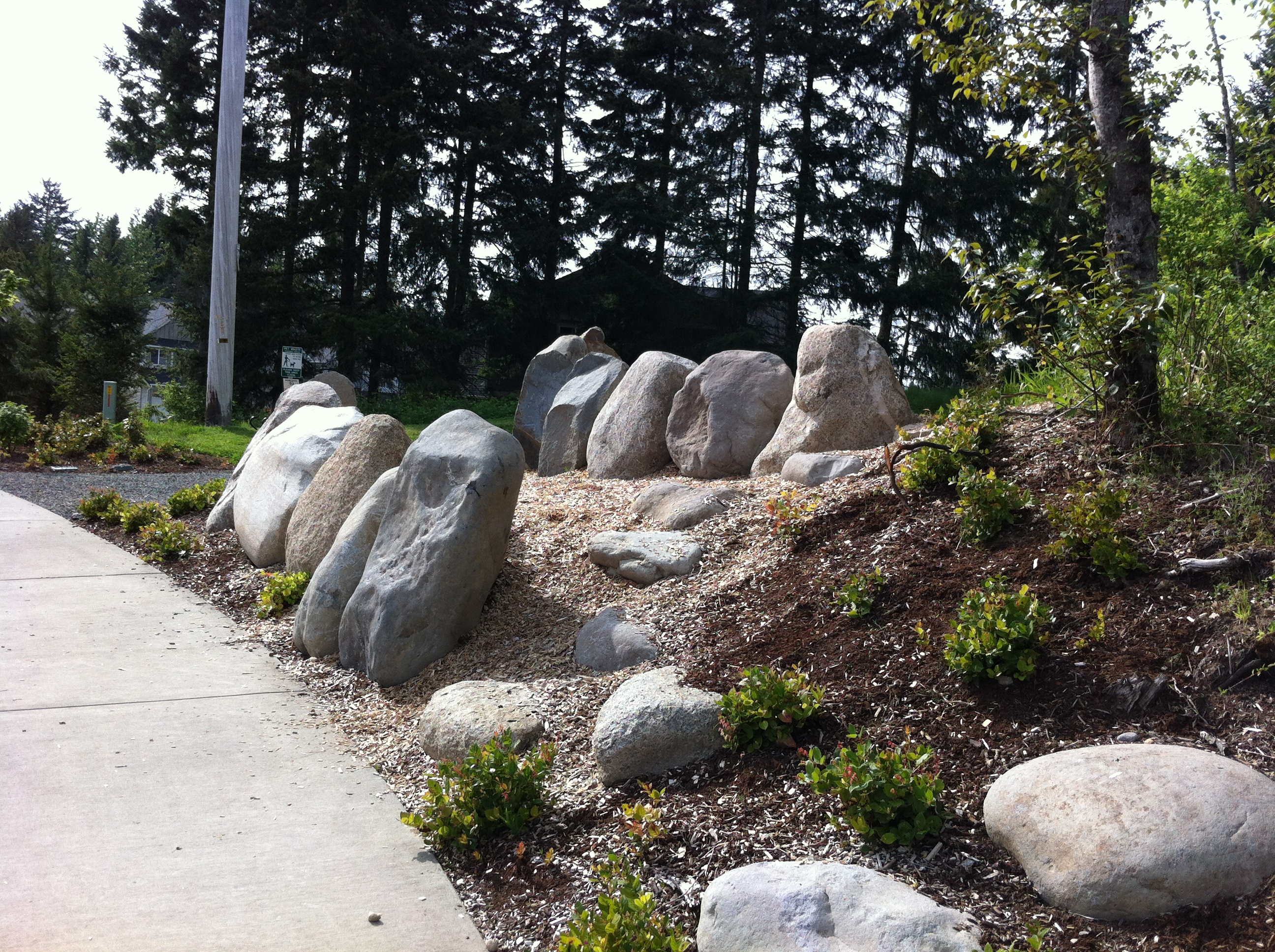 Incorporating nature into parks, MacKay Sposito